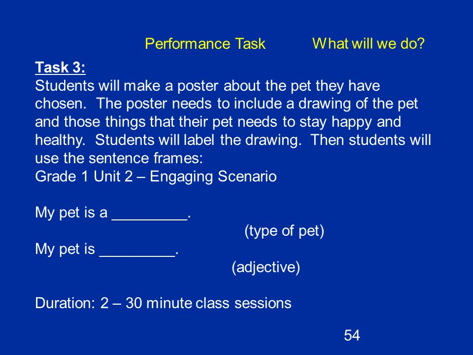 Performance Task What will we do Task 3: