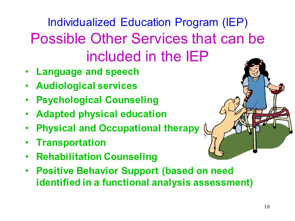 Individualized Education Program (IEP) Possible Other Services that can be included in the IEP