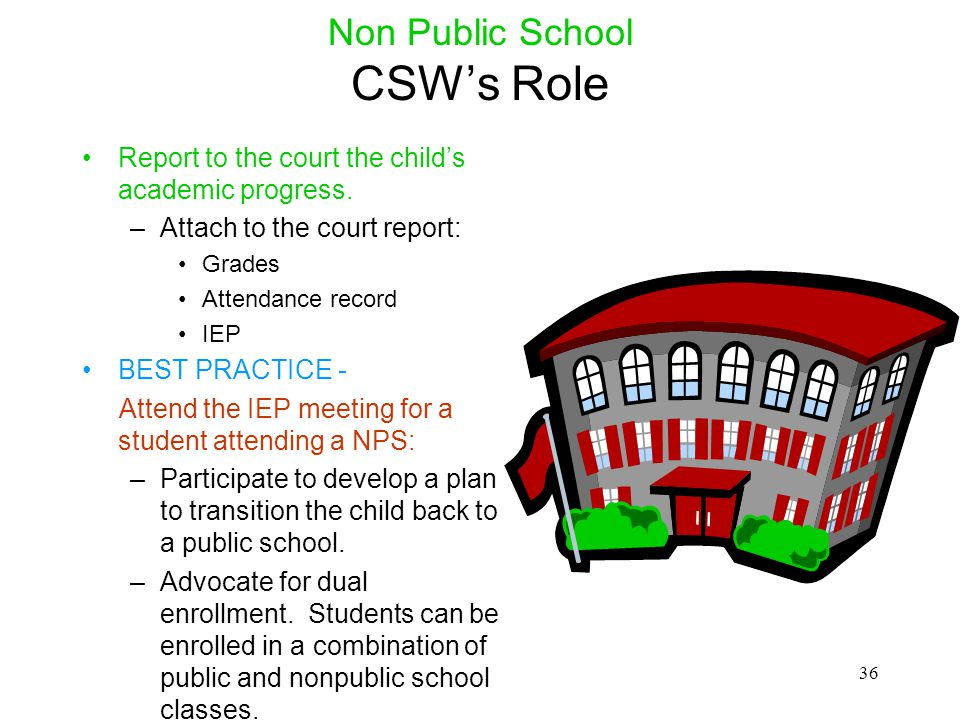 Non Public School CSW's Role