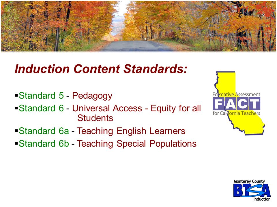 Induction Content Standards: