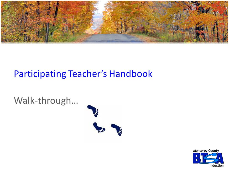 Participating Teacher's Handbook