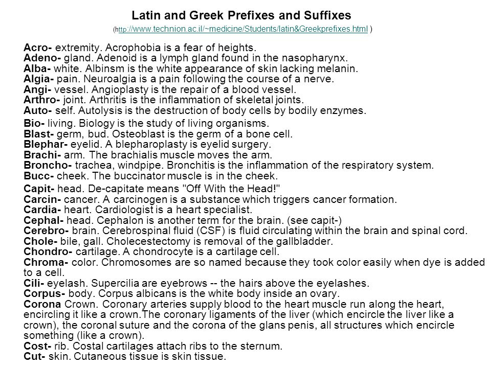 Latin and Greek Prefixes and Suffixes (http://www. technion. ac