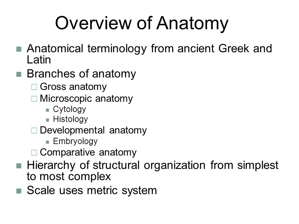 Overview of Anatomy Anatomical terminology from ancient Greek and Latin. Branches of anatomy. Gross anatomy.