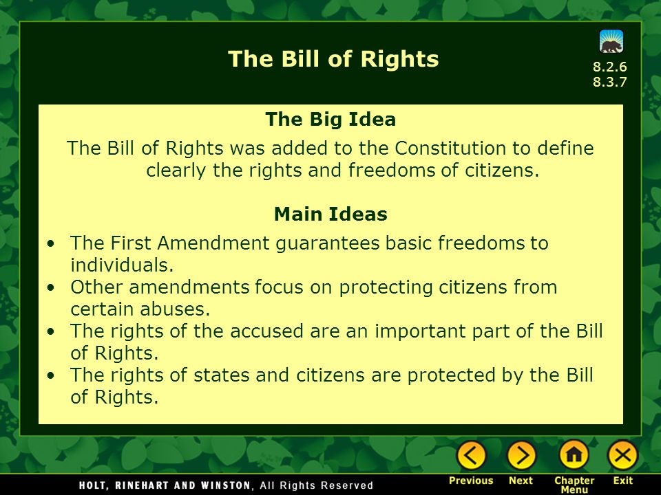 The Bill of Rights The Big Idea