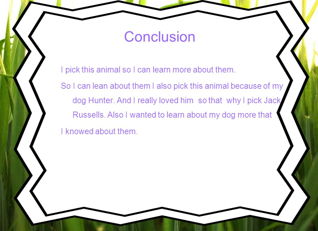 Conclusion I pick this animal so I can learn more about them.