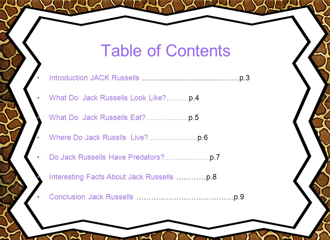 Table of Contents Introduction JACK Russells …………………………………p.3