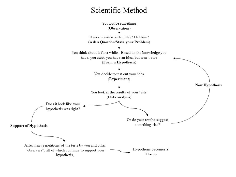 Scientific Method You notice something (Observation)