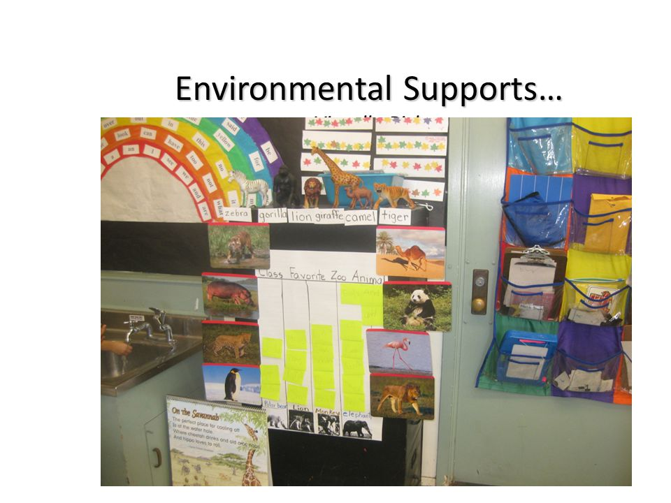 Environmental Supports… Visually Rich