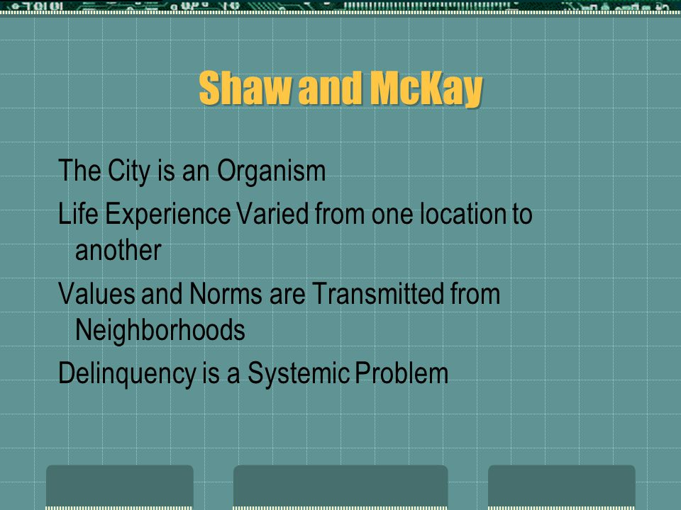 Shaw and McKay The City is an Organism