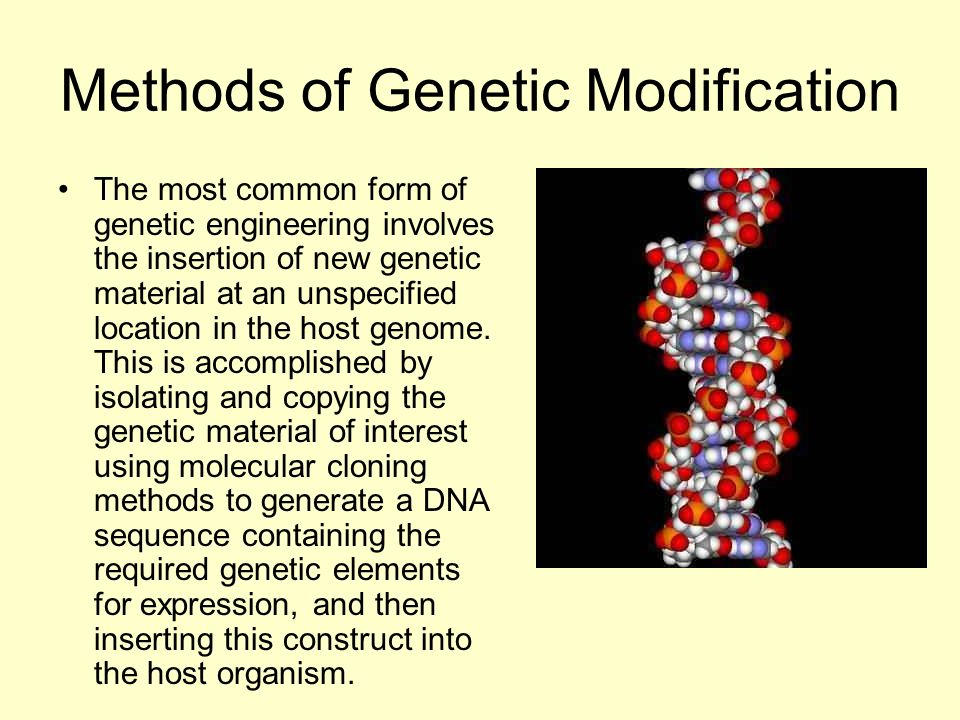 Methods of Genetic Modification