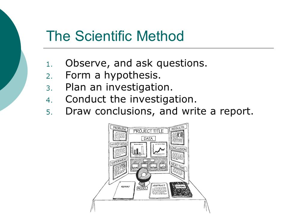The Scientific Method Observe, and ask questions. Form a hypothesis.