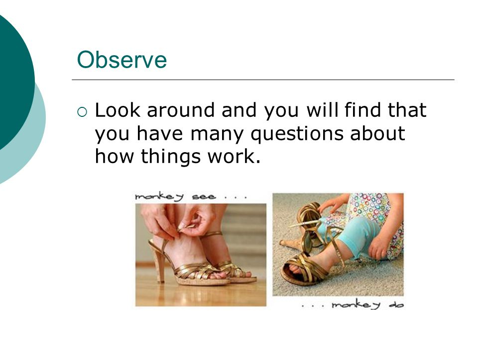 Observe Look around and you will find that you have many questions about how things work.
