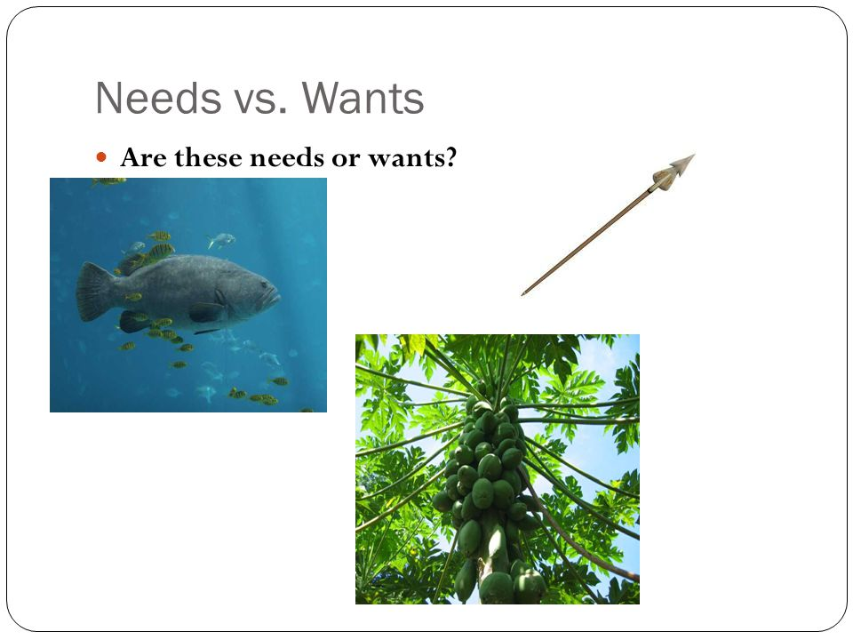 Needs vs. Wants Are these needs or wants