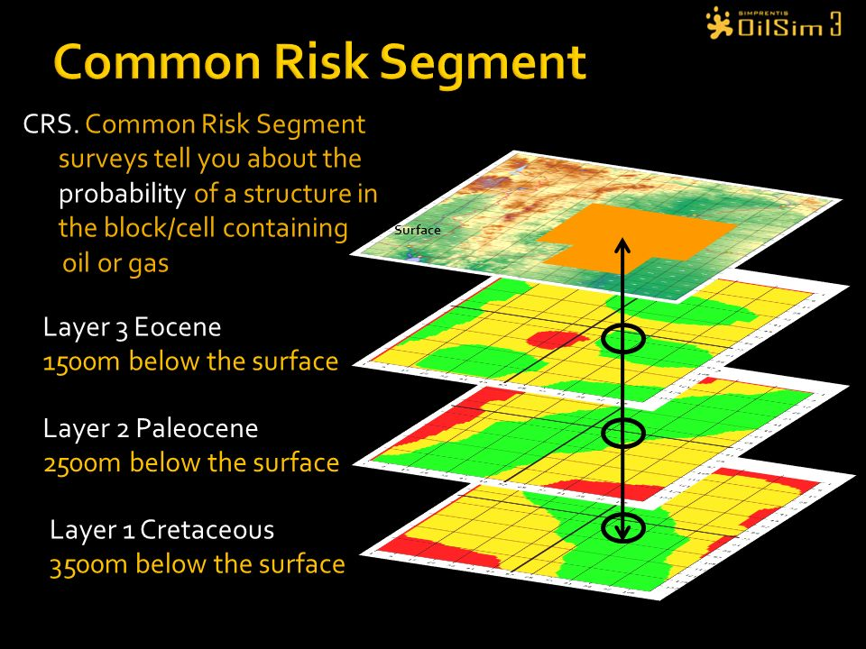 Common Risk Segment CRS. Common Risk Segment surveys tell you about the probability of a structure in the block/cell containing.