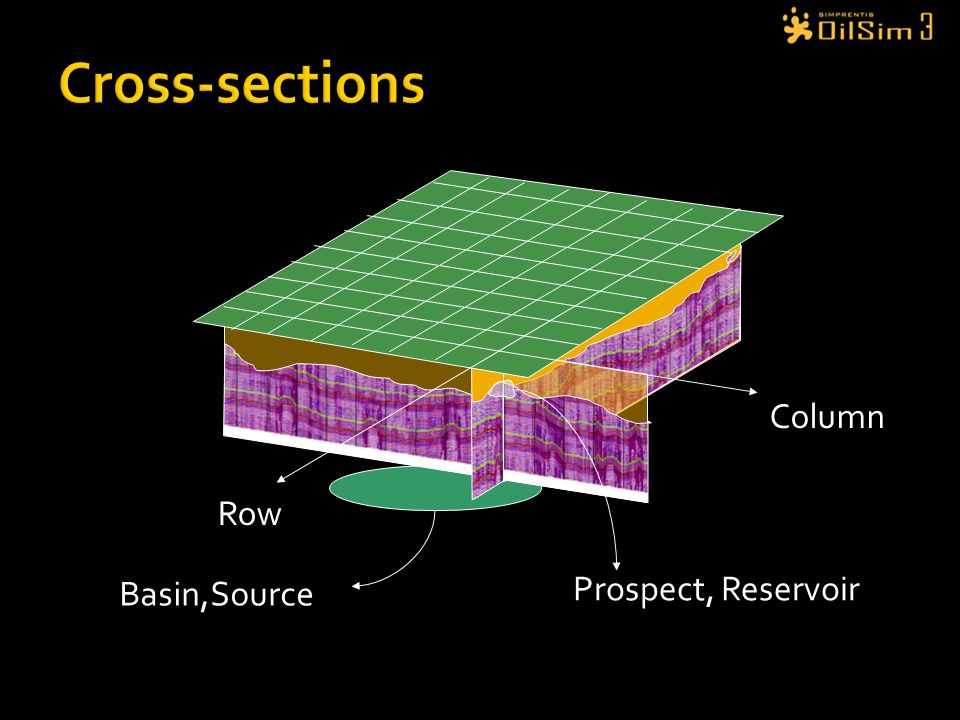 Cross-sections Column Row Prospect, Reservoir Basin,Source