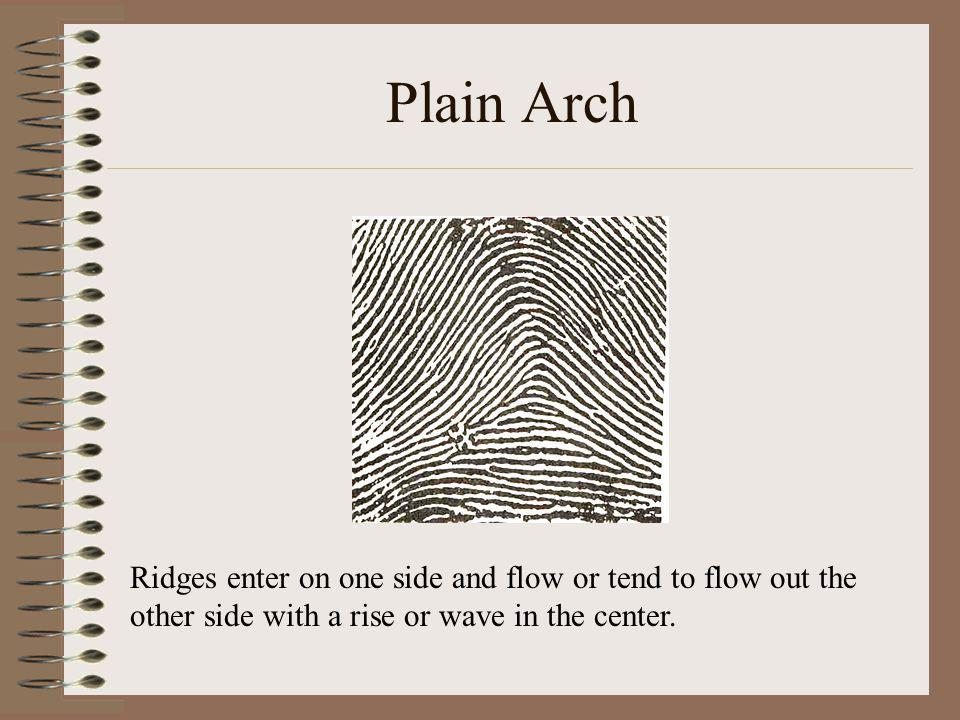 Plain Arch Ridges enter on one side and flow or tend to flow out the other side with a rise or wave in the center.