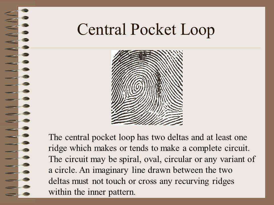 Central Pocket Loop