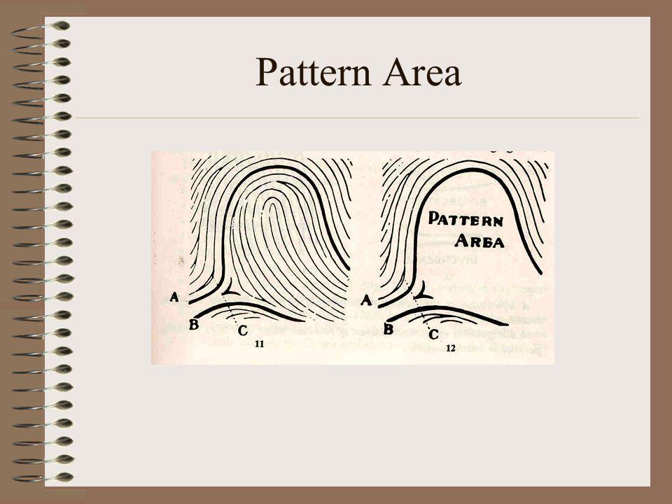 Pattern Area