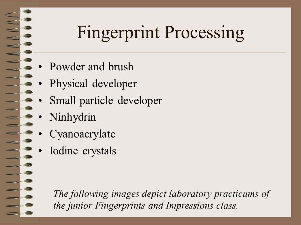 Fingerprint Processing