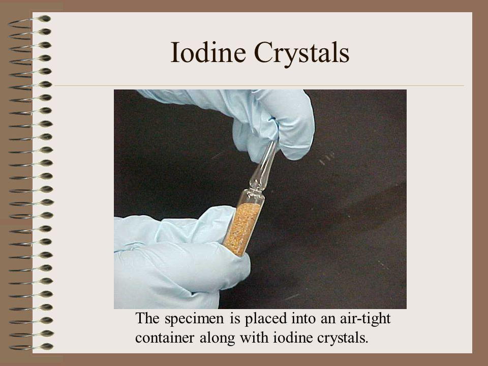 Iodine Crystals The specimen is placed into an air-tight container along with iodine crystals.