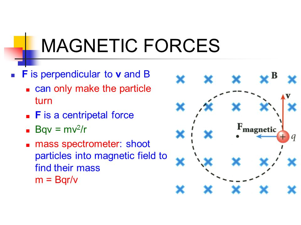 MAGNETIC FORCES F is perpendicular to v and B