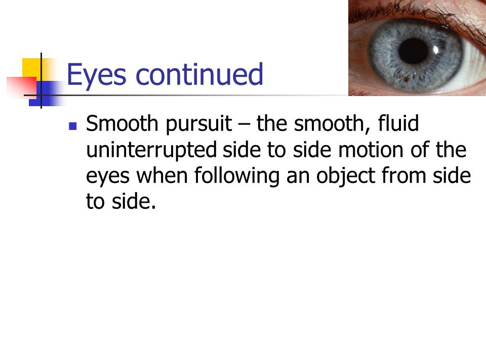 Eyes continued Smooth pursuit – the smooth, fluid uninterrupted side to side motion of the eyes when following an object from side to side.