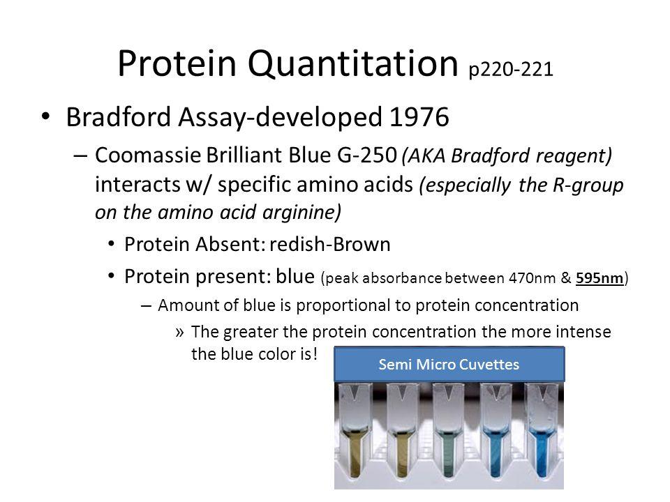Protein Quantitation p220-221