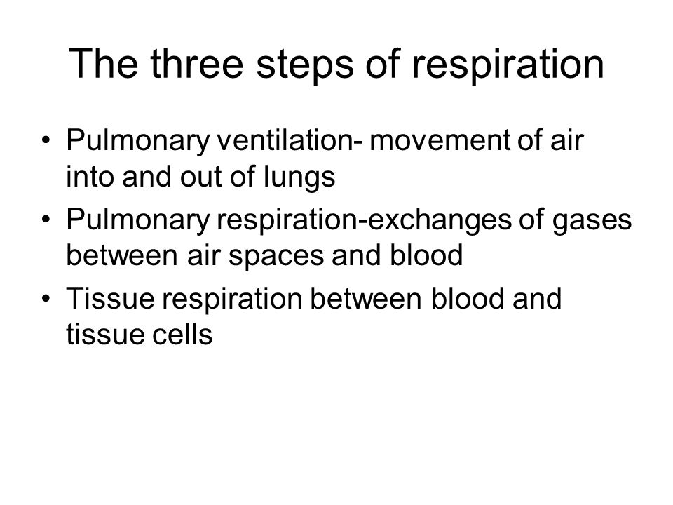 The three steps of respiration