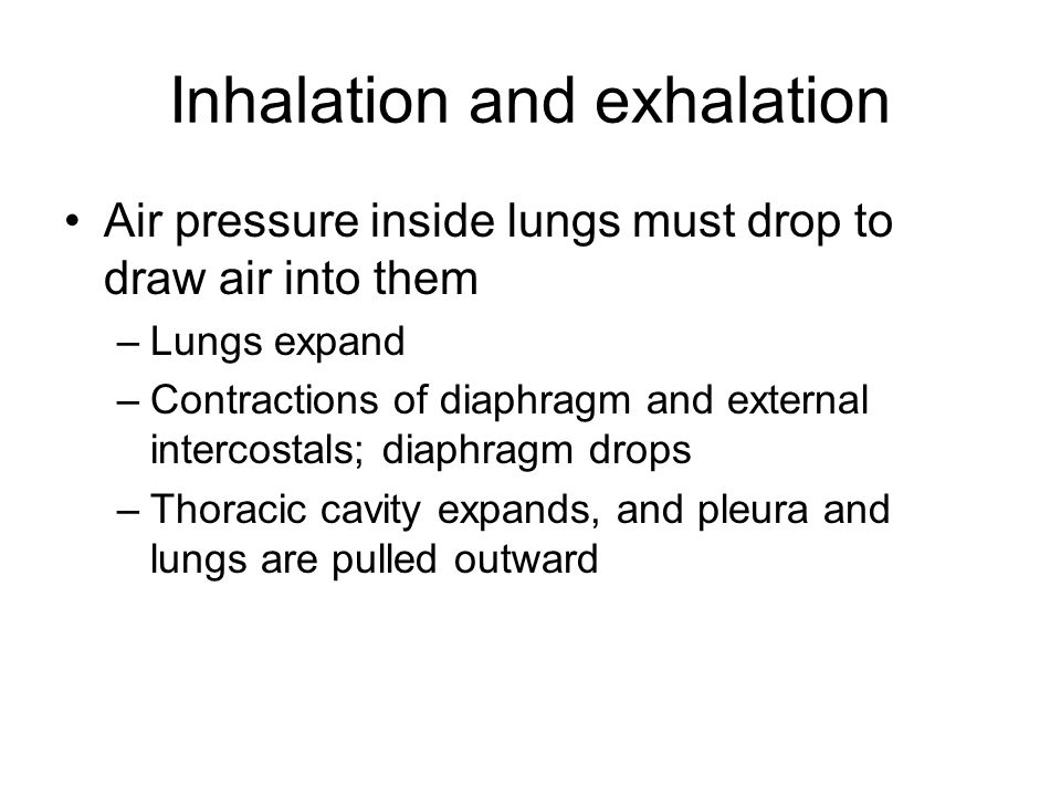 Inhalation and exhalation