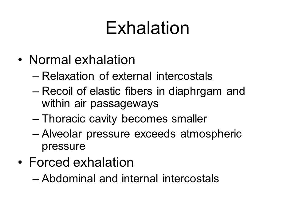 Exhalation Normal exhalation Forced exhalation