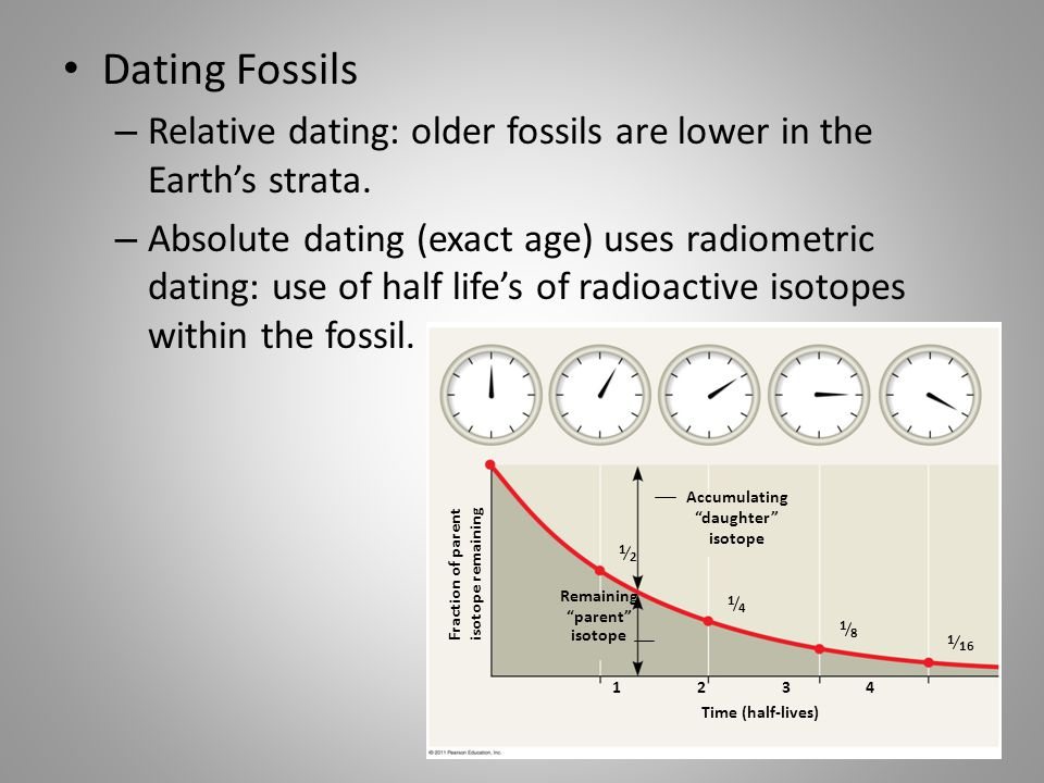 Radioactive isotopes used in hookup fossils