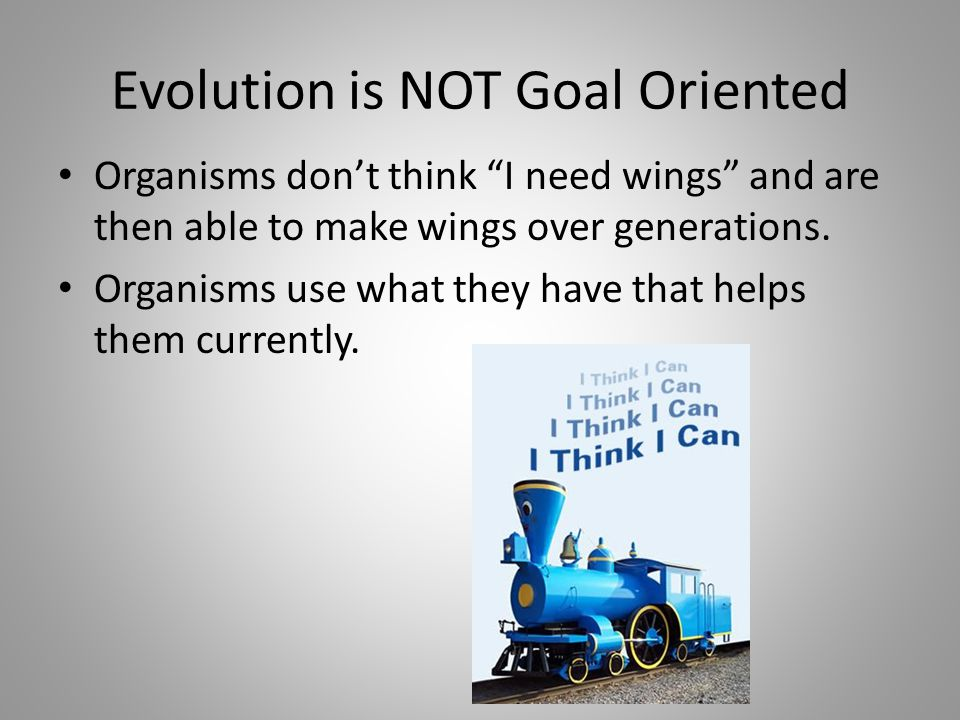 Evolution is NOT Goal Oriented