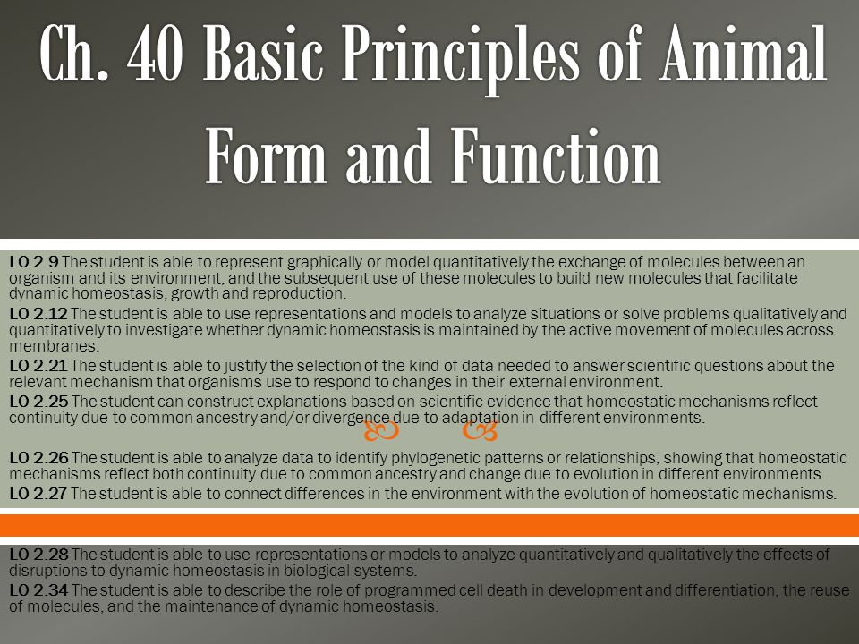 Ch. 40 Basic Principles of Animal Form and Function