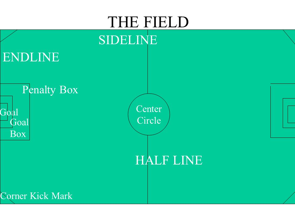 THE FIELD SIDELINE HALF LINE Penalty Box ENDLINE Center Goal Circle
