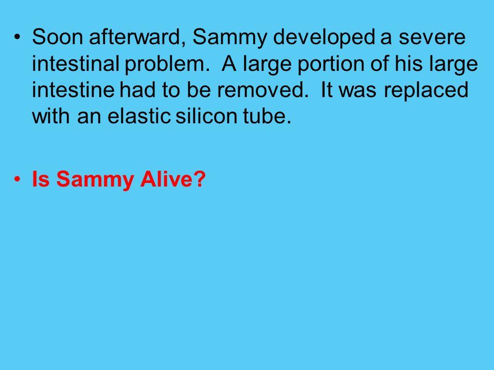 Soon afterward, Sammy developed a severe intestinal problem