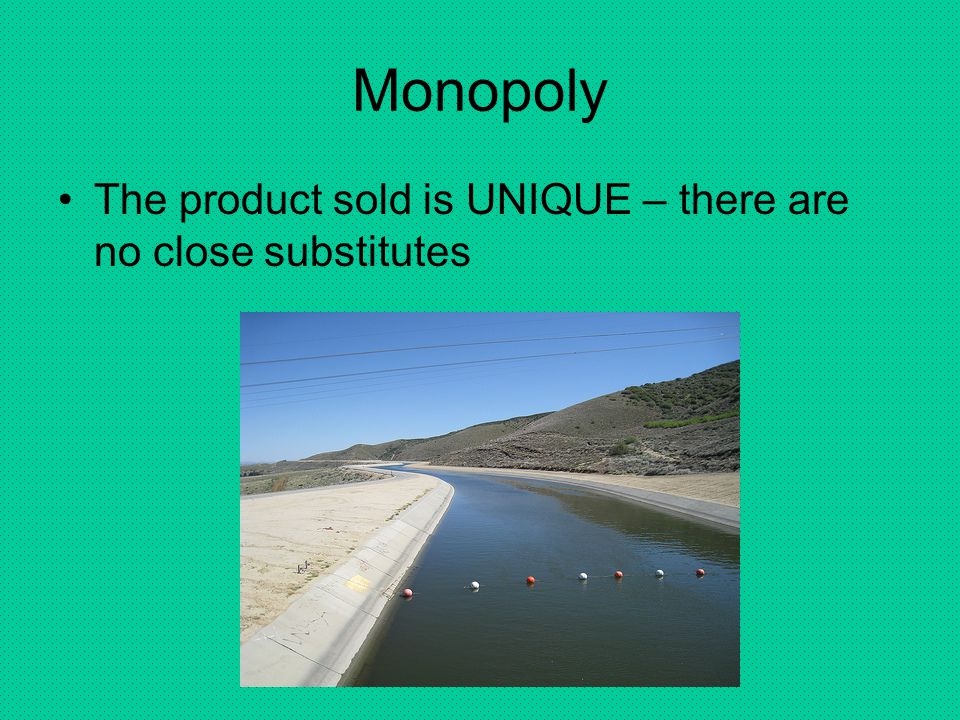 Monopoly The product sold is UNIQUE – there are no close substitutes