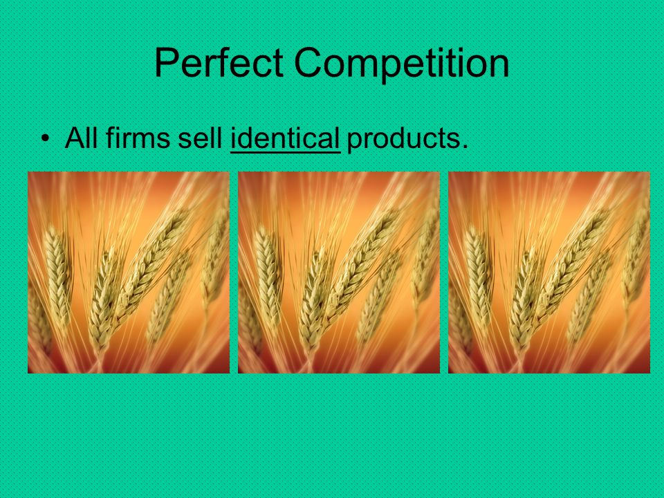 Perfect Competition All firms sell identical products.