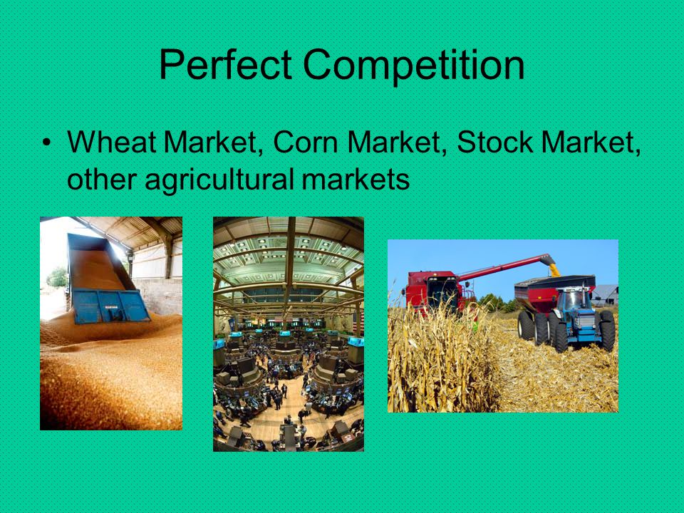 Perfect Competition Wheat Market, Corn Market, Stock Market, other agricultural markets