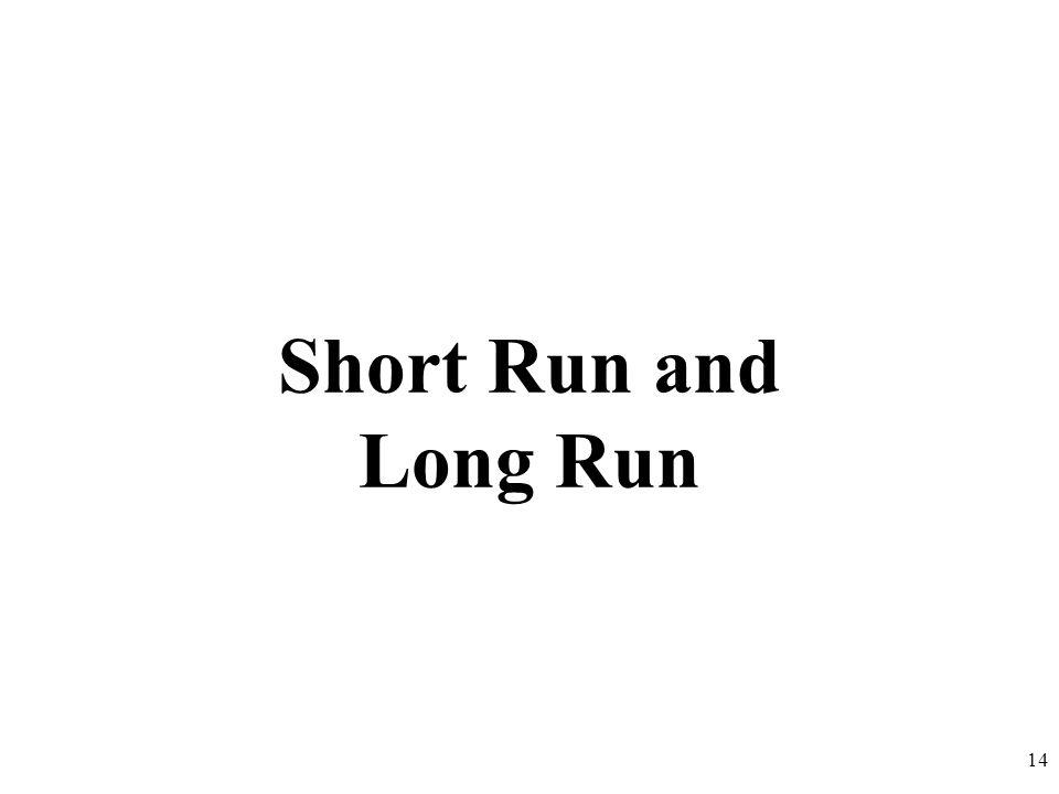 Short Run and Long Run 14