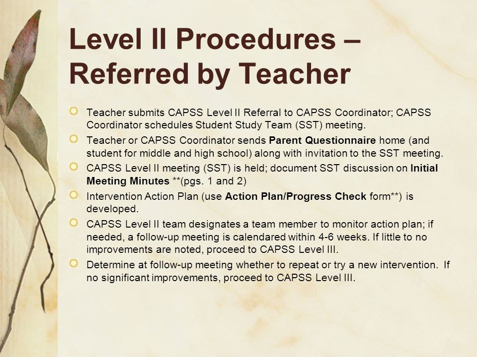 Level II Procedures –Referred by Teacher