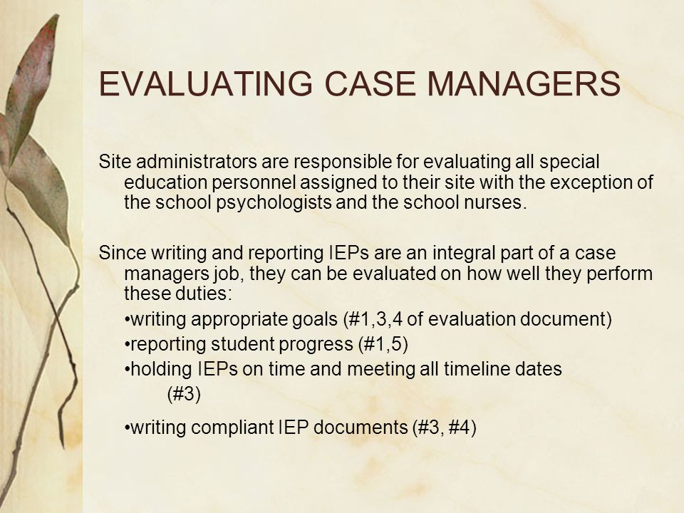 EVALUATING CASE MANAGERS