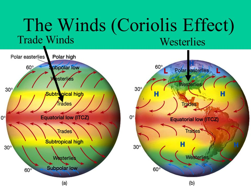 The Winds (Coriolis Effect)