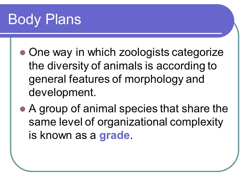 Body Plans One way in which zoologists categorize the diversity of animals is according to general features of morphology and development.