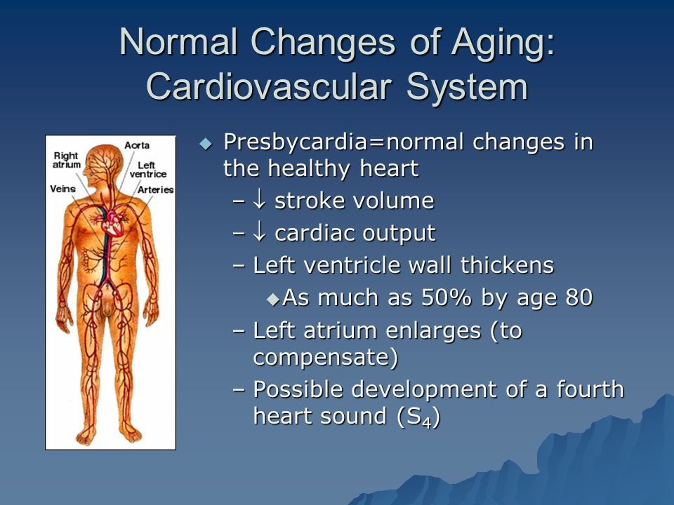 Normal Changes of Aging: Cardiovascular System