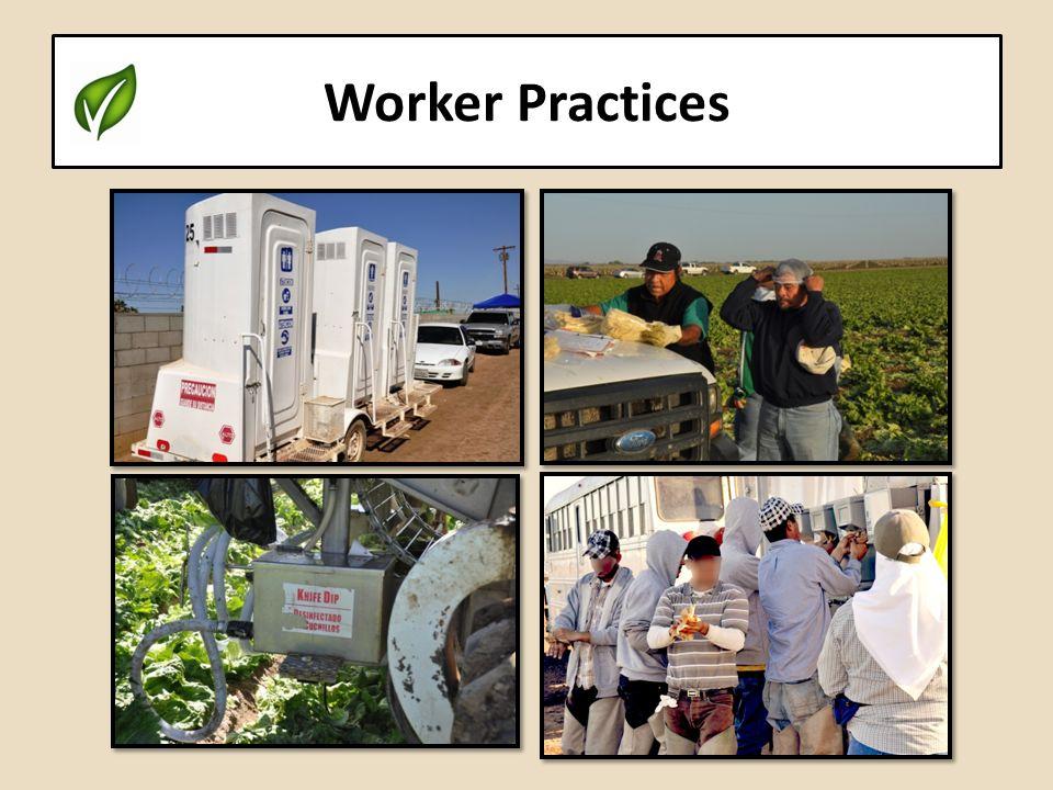 Worker Practices
