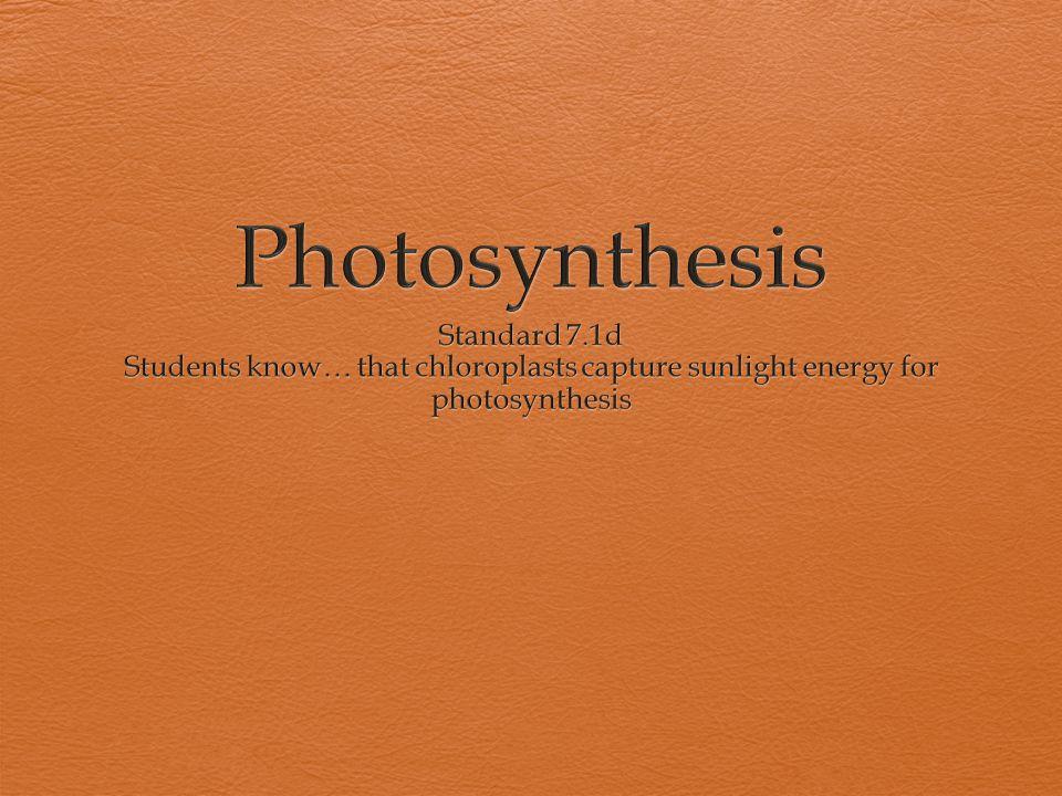 Photosynthesis Standard 7.1d