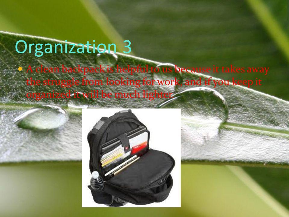Organization 3