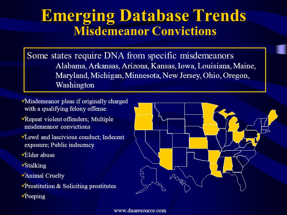 Emerging Database Trends Misdemeanor Convictions