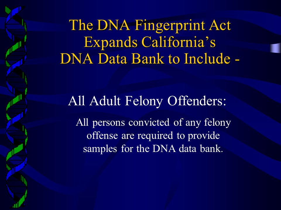 All Adult Felony Offenders: