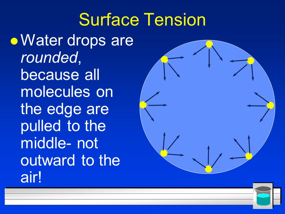 Surface Tension Water drops are rounded, because all molecules on the edge are pulled to the middle- not outward to the air!